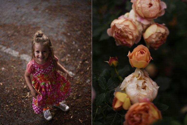 Розова градина под носа